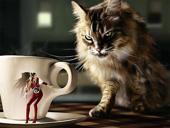 photoshop- (4) عکسهای جالب و خنده دار فتوشاپ عکسهای جالب و خنده دار فتوشاپ photoshop 4