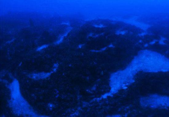 ادعای کشف کشتی فرازمینیها در مثلث برمودا 1774767 410